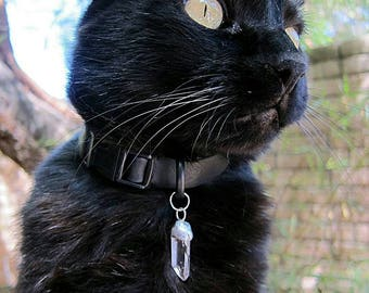 Pet Collar Crystal Charm Familiar Cat Small Dog