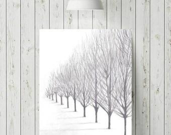 Nature Print, Minimalist Art Print, Tree Print, Calming Art, Modern Wall Art, Landscape Print, Wall Art Prints, Printable Wall Art