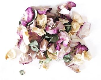 Eucalyptus Rose Petals Mix  2 Cups Delicate Scent Dried Rose Petal Flower Leaf Mix for Craft Decor Ornament Filler Potpourri Fill