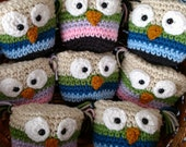 Owl Pouch, Hand Crocheted Small Pouch, Tooth Fairy Holder, Country Goods