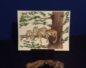 Digital print - Family Picture of Three Tigers Laying in a Tree, Great for Gift get Personalized to your Family with Names and Birthdays