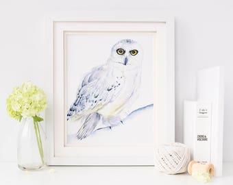 Woodland Nursery, Hedwig, Harry Potter Baby, Harry Potter Nursery, Nursery Wall Art,  Harry Potter Baby Shower, Owl Decor, Harry Potter Gift