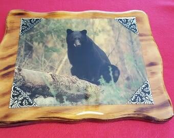 Black Bear Plaque