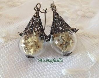 Filigree earrings and white dry flowers.