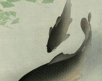 "Japanese Art Print ""Carp (Koi)"" by Ohara Koson, woodblock print reproduction, fine art, asian art, cultural art, aquatic"