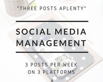 "Full Social Media Management for Businesses - ""Three Posts Aplenty"": Content created and posted to grow your online presence and sales."