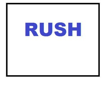 RUSH Processing - 24, 12, 8, 6, 4, or 2 hour Service - SAMEDAY Service  OR  Next Day Service  - Rush the Turnaround Time