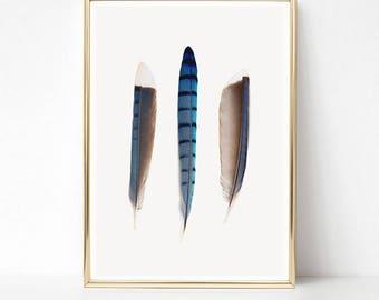 Feather Print, Boho Wall Art, Boho Decor, Printable Art, Feather Wall Art, Feathers Art Print, Boho Print, Eclectic Decor, Bohemian Art