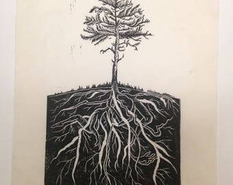 Our Limbs are Our Roots