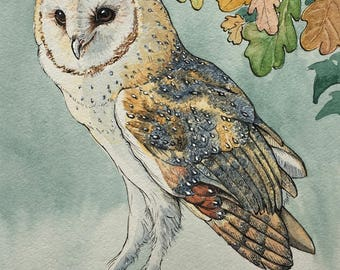 Barn owl in winter blank greetings card