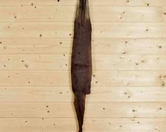 Genuine Full Body River Otter Pelt for Sale - SW4476