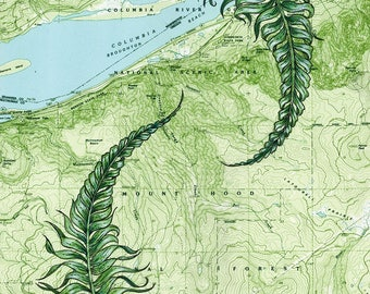 Columbia River Gorge painting print, Gorge Ferns, Oregon hiking print, Portland art, Multnomah Falls, Oneonta Falls, Horsetail Falls