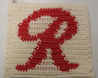 Double Paneled Crocheted Rainier Potholder
