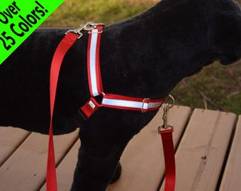 Reflective Dual-Attach No-Pull Harness™, front attach, back attach, training harness - many colors