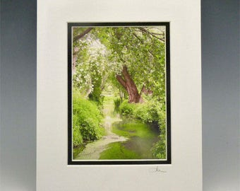 Monet's Creek, Matted Photo,  5x7 - Frame Ready