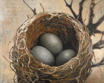Three Bird Nest Art print, Bird's Nest Art Print on Fine Art Paper, Giclee Print of a Bird Nest with Three Eggs, Bird Nest Print on Paper