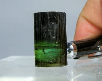 86 carat Terminated Green Tourmaline Natural Crystal, Loose, Brazil Mineral. Great Wire Wrap Piece or Display DanPickedMinerals