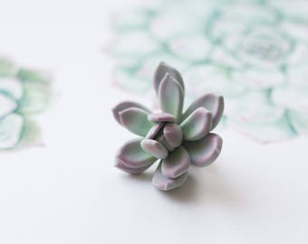 Succulent pin - succulent brooch - brooch for coat - succulent jewelry - terrarium jewelry - botanical brooch - nature inspired jewelry