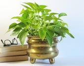 """Vintage Footed Brass Planter w 3 Knob Feet - 6.25"""" Tall Brass Cactus Pot - Succulent Planter - Brass Home Decor - Indoor Garden Pot"""