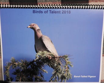 Birds of Talent 2018 Calendar