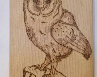 Owl cheese board
