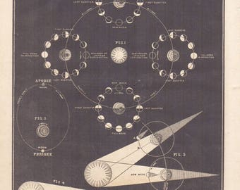 1855 Astronomy Print Phases of the Moon  Science Space Antique Print Celestial