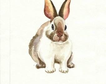 Rabbit original watercolor painting, 8 X 10