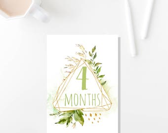 The La Petit Suite, 4x6 Baby Milestone Cards Printable, Baby Shower, Baby Monthly Cards, Baby Keepsakes, Baby Announcement Cards
