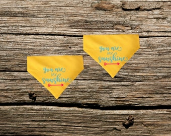 You Are My Sunshine Over The Collar Pet Bandana