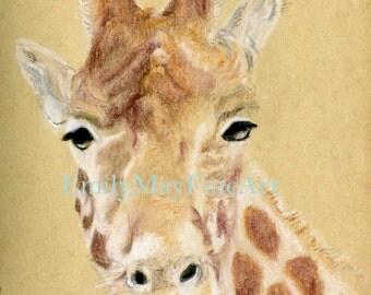 Giraffe Pastel Drawing