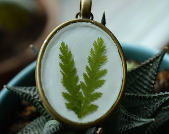 pressed fern pendant