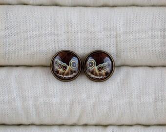 Butterfly wing picture earrings, Brown earrings, Stud earrings, Butterfly wing jewelry, Glass dome earrings, Butterfly earrings NJ 026