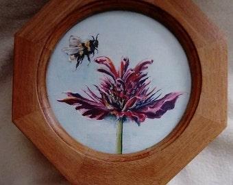 Bee Balm Box
