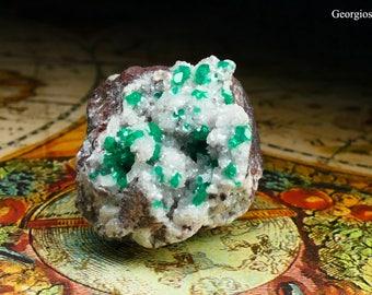 Dioptase Mineral Specimen in Matrix