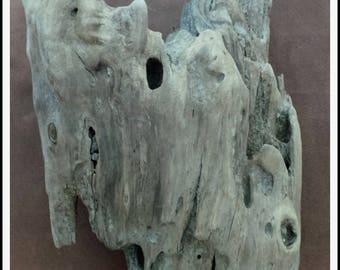 Beautiful Mediterranean Driftwood stump