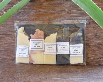 Travel Size Soap Pack, Variety Pack, Small Soaps, Test Size Soap, Handmade Vegan Artisan Soap