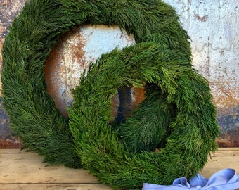 """Preserved Tuscan Cypress Wresth - 20"""""""