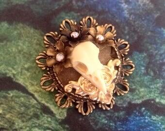 The bird skull brooch