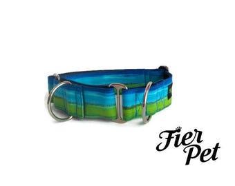 martingale collar, dog martinguale collar,rainbow collar ,whippet collar, greyhound collar