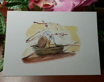 Postcard birds nest