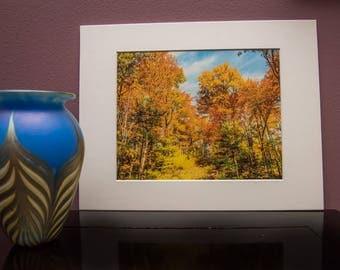 Matted Art Print-Fall Colors-Trees-Nature-Forest-White Matt-Home Office Decor- White Matt-Travel-Wisconsin-Gift-Photo-Art