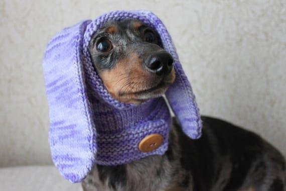 Knitting Pattern Dog Hat Rabbit Hood Mini Dachshund Hat