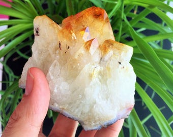 Citrine Crystal infused w/ Reiki, Healing Crystals and Stones