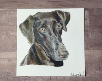 Small Pet Portrait (4x4), Custom Pet Portrait, Mini Pet Portrait, Custom Dog Portrait, Mini Dog Portrait, Small Dog Portrait