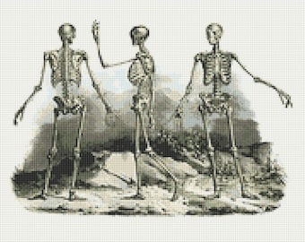Human Skeletons Anatomy Counted Cross Stitch Pattern / Chart, Instant Digital Download  (AP311)