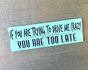 If You are Trying to Drive Me Crazy, You are Too Late-MAGNET