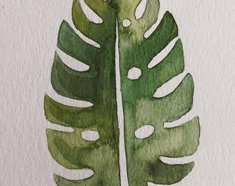 monstera leaf 4x6