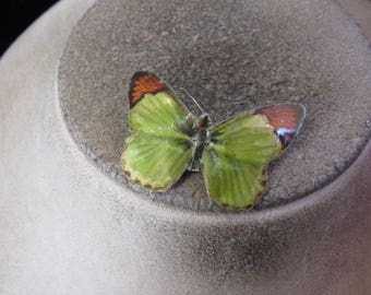 Vintage Brown & Green Enameled Butterfly Pin