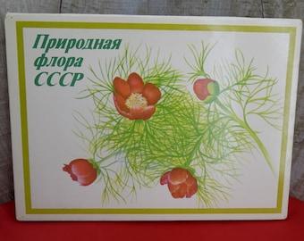 Vintage matches 18 pcs Soviet matches Collectible matches Gift matches Soviet vintage matches 1980s Rare matches Souvenir matchbox