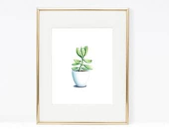 Watercolor Succulent on White